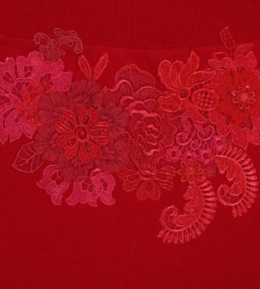 Одежда спортивный костюм красный Дакота 2
